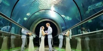 Rhiann en Cheetah trouwen in het Phuket Aquarium