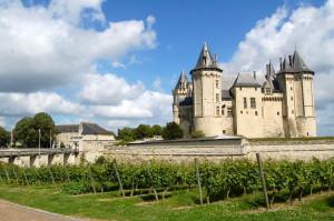 Vignes_du_château_de_Chinon_Loire